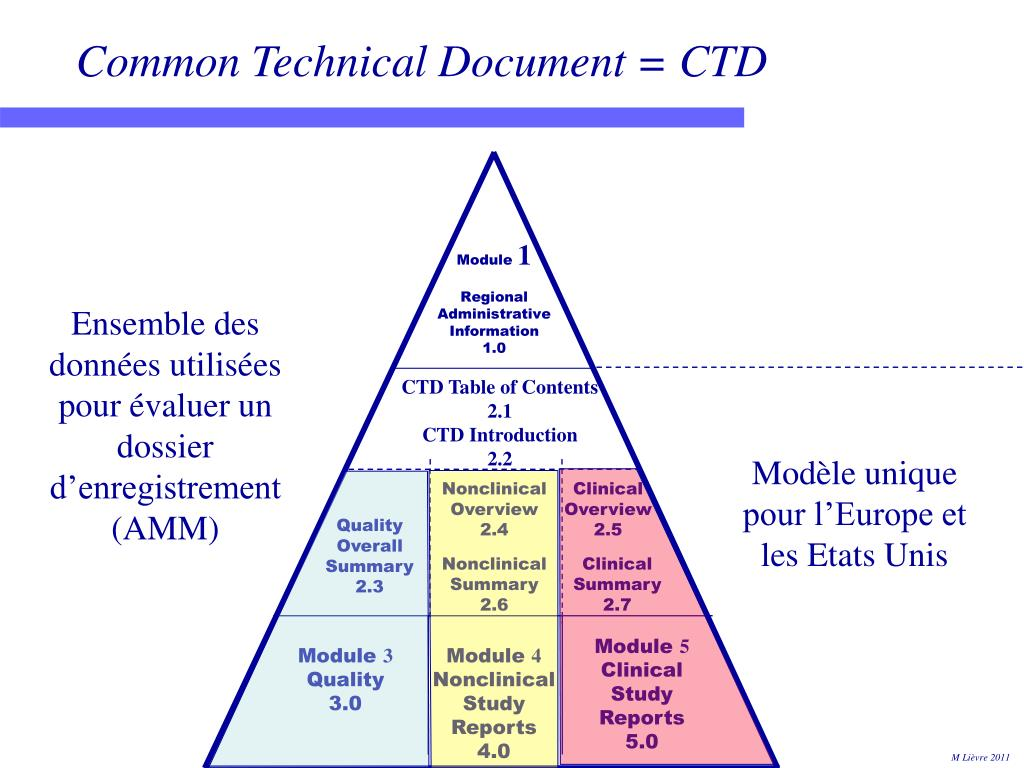 Common Technical Document = CTD