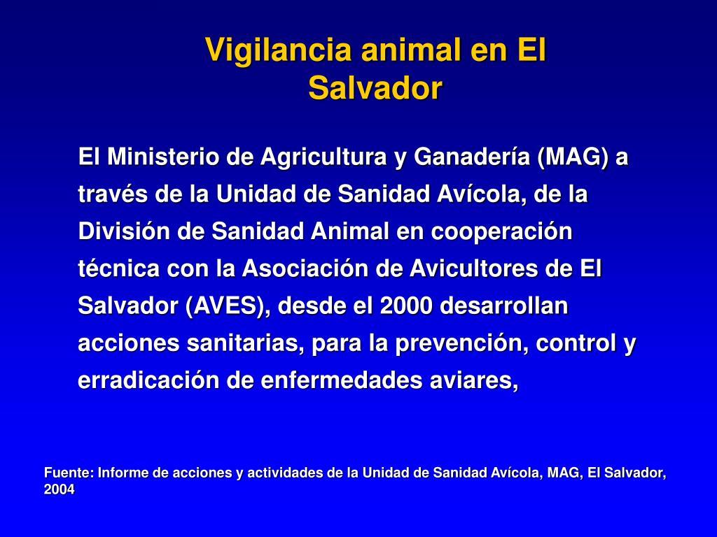 Vigilancia animal en El Salvador