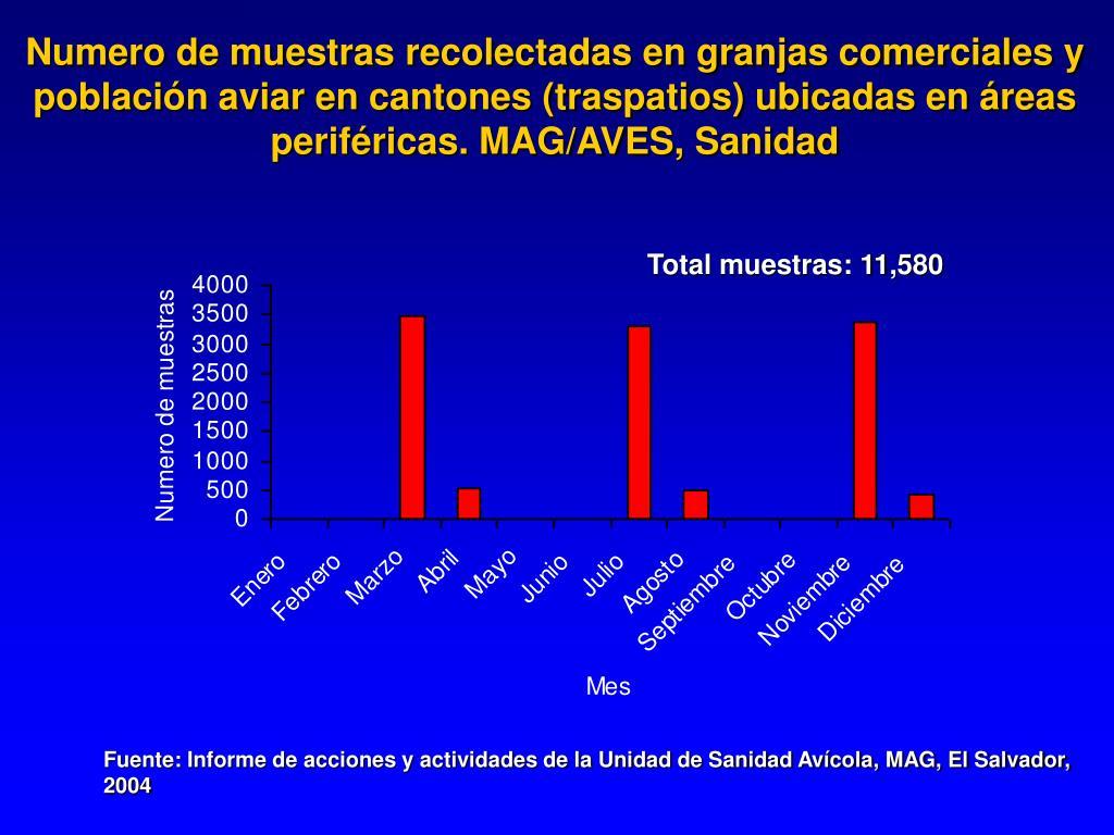 Numero de muestras recolectadas en granjas comerciales y población aviar en cantones (traspatios) ubicadas en áreas periféricas. MAG/AVES, Sanidad