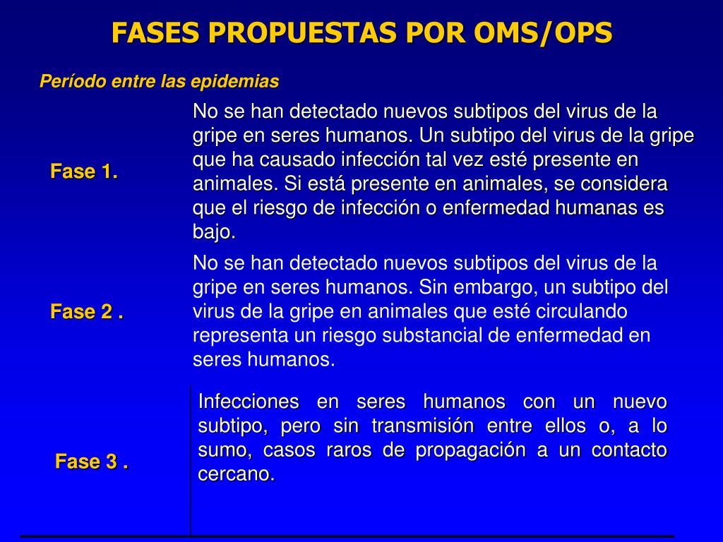 FASES PROPUESTAS POR OMS/OPS