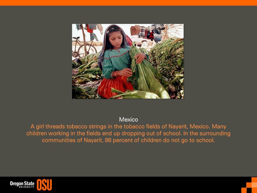 powerpoint presentation on child labour pdf