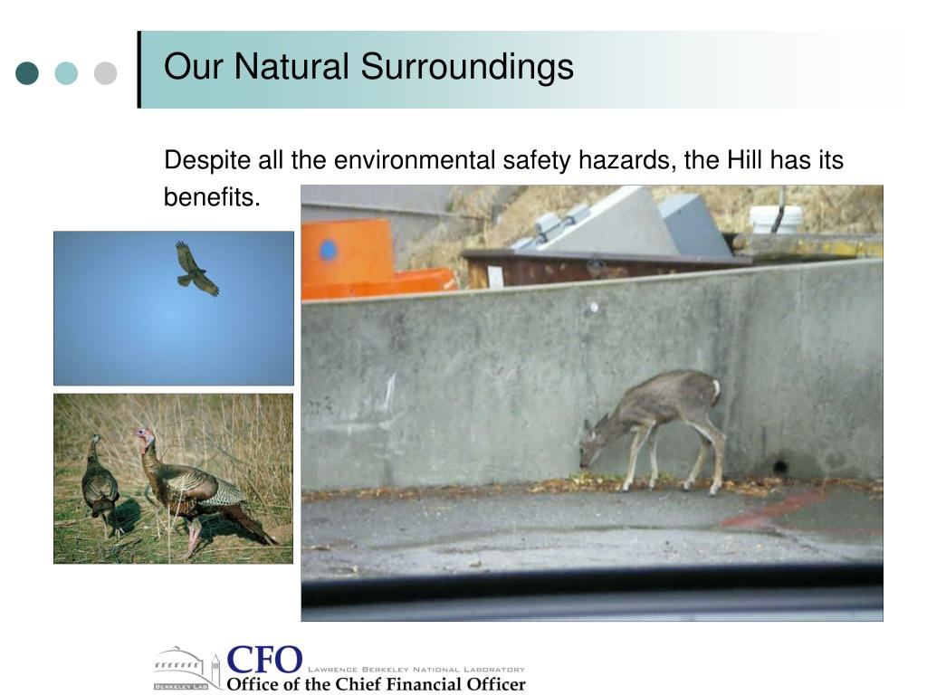 Our Natural Surroundings