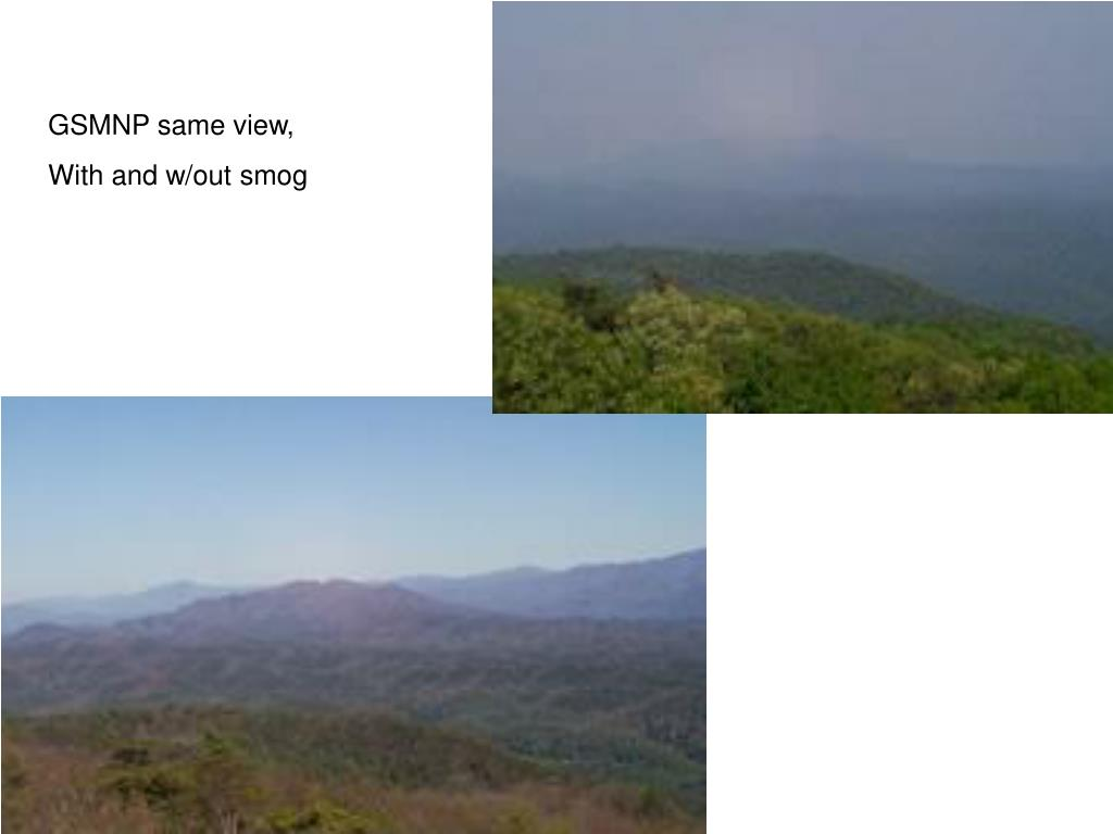 GSMNP same view,