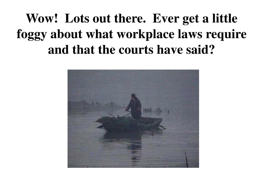 Wow!  Lots out there.  Ever get a little foggy about what workplace laws require and that the courts have said?