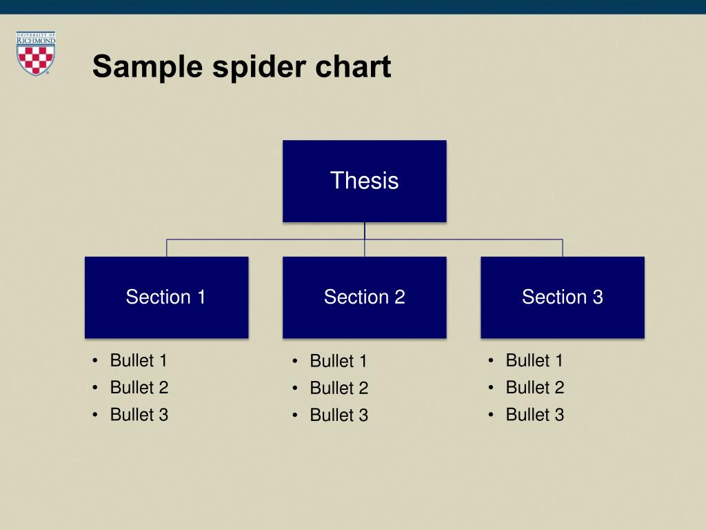 Sample spider chart