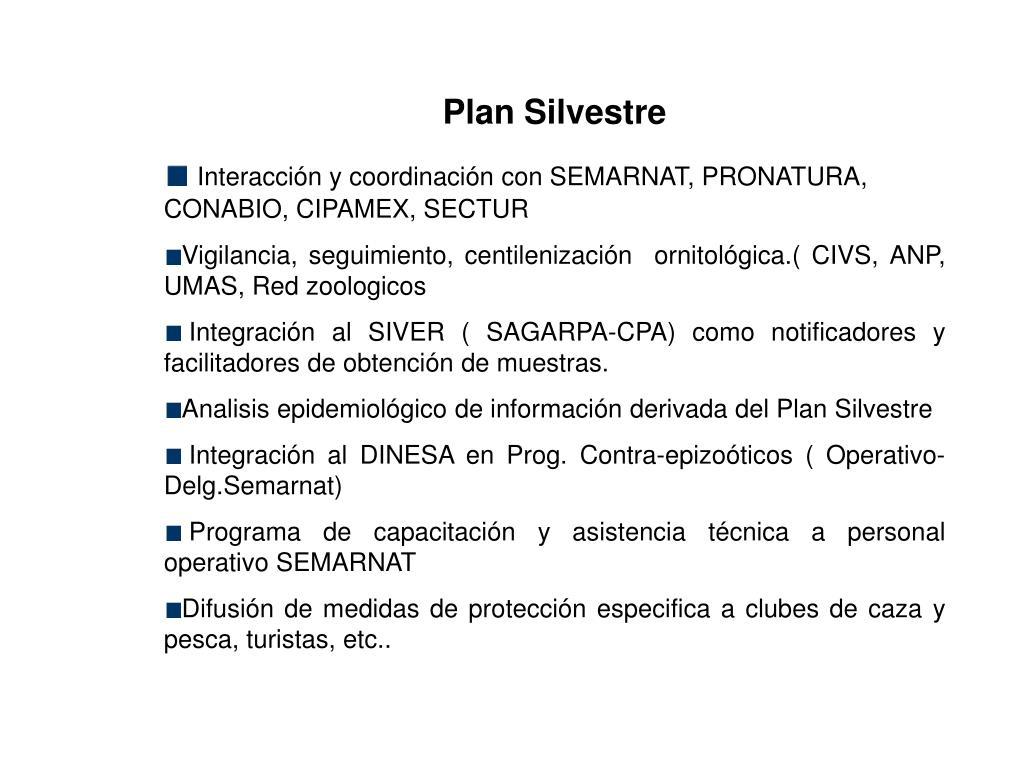 Plan Silvestre