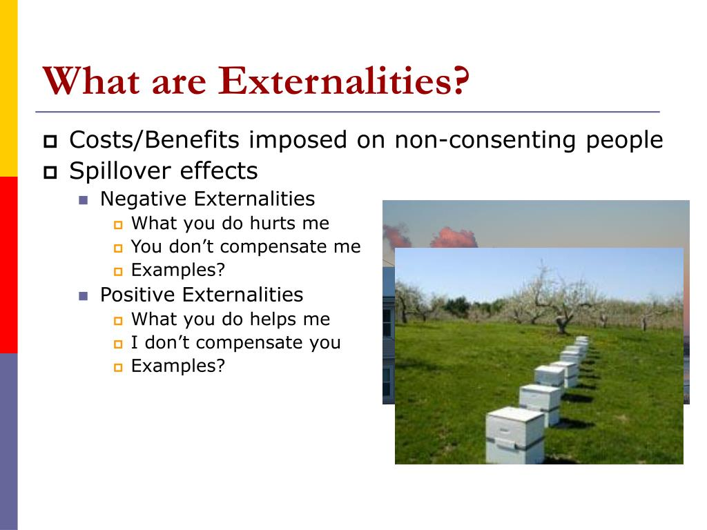 What are Externalities?