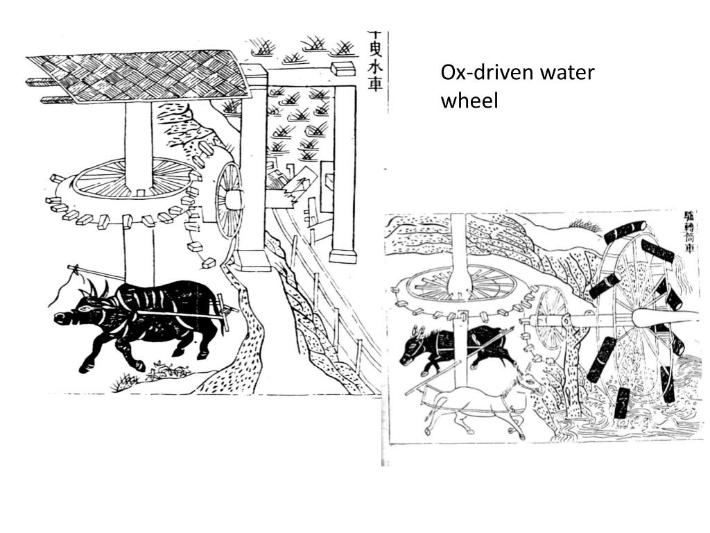 Ox-driven water wheel