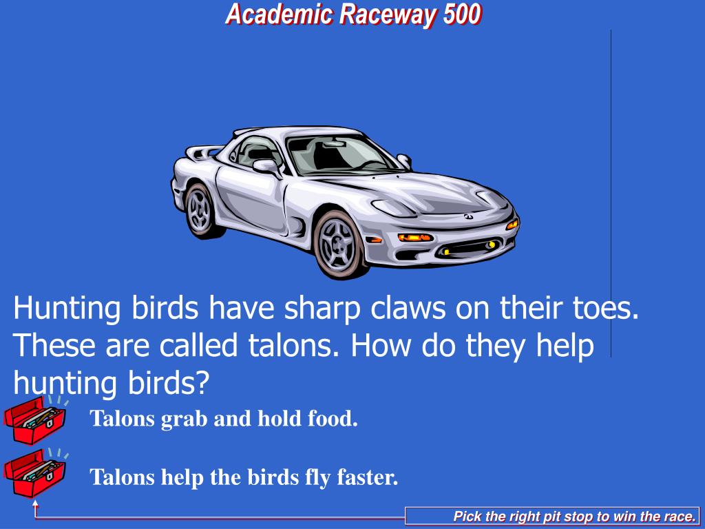 Talons grab and hold food.