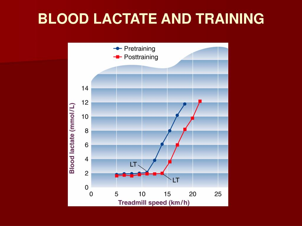 BLOOD LACTATE AND TRAINING