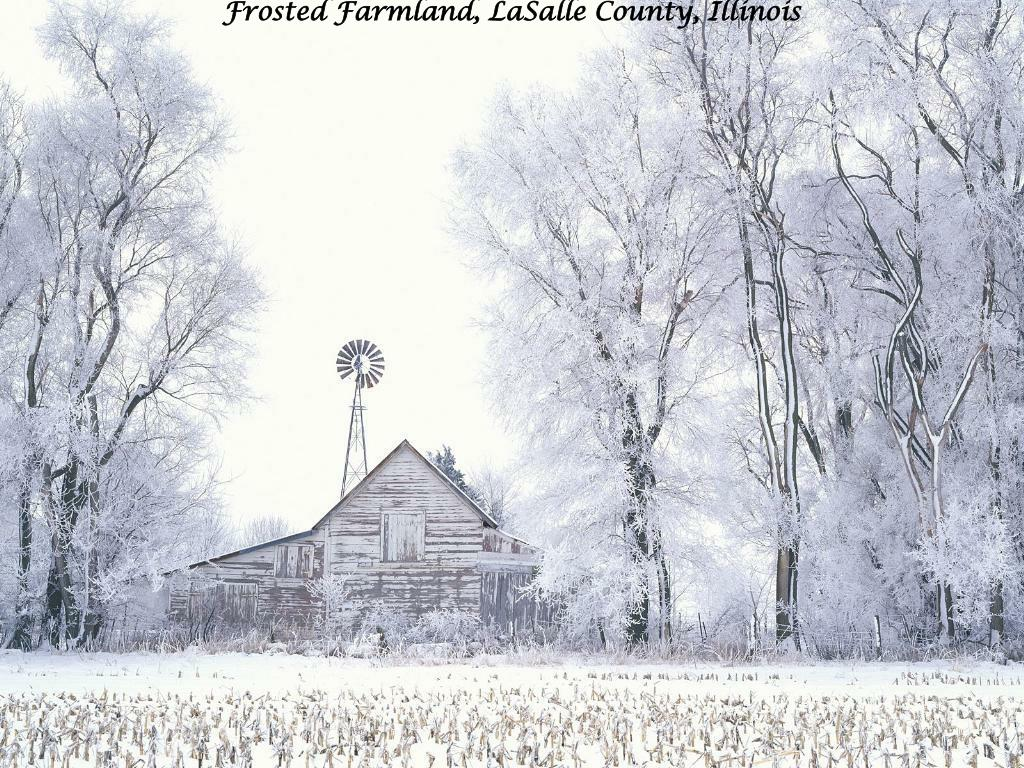 Frosted Farmland, LaSalle County, Illinois