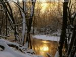 harpeth river winter sunrise williamson county tennessee