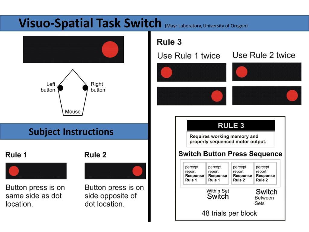 Visuo-Spatial Task Switch