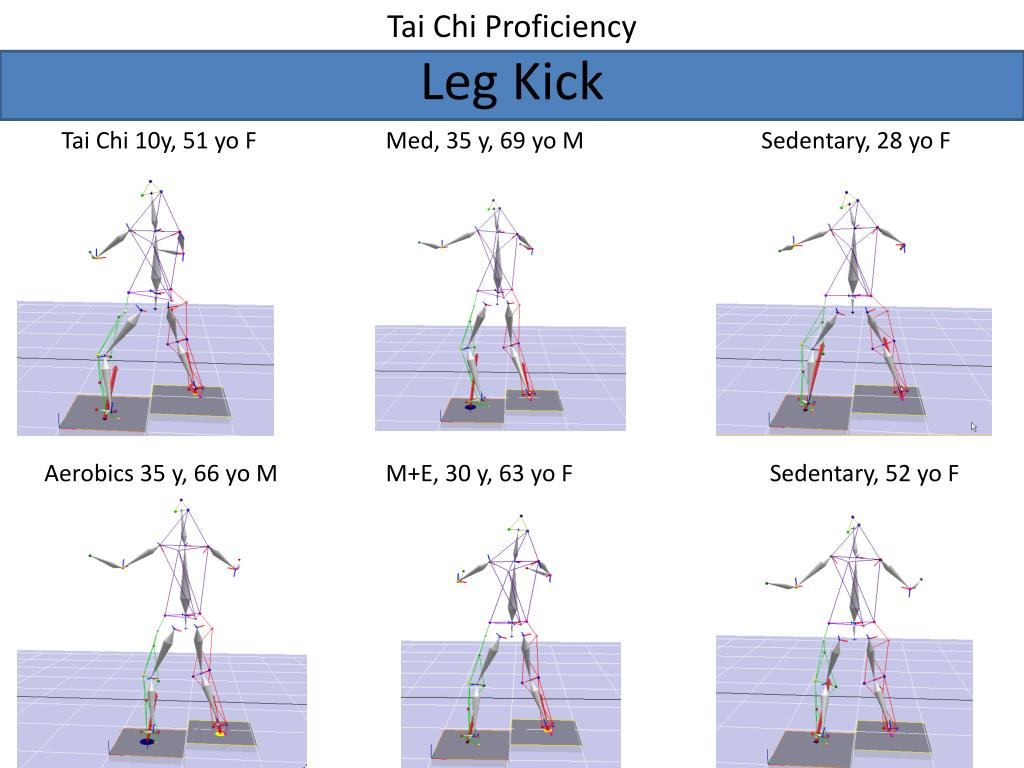 Tai Chi Proficiency