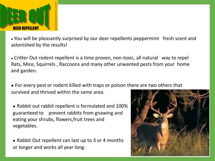 You will be pleasantly surprised by our deer repellents peppermint   fresh scent and astonished by ...