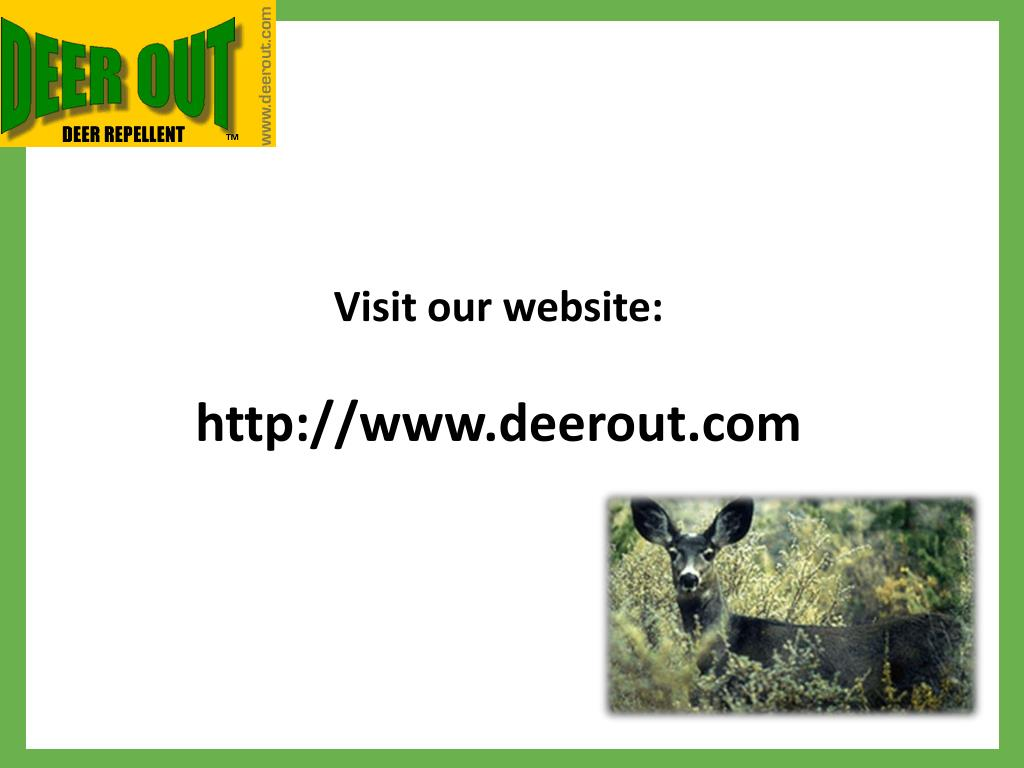 Visit our website: