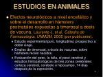 estudios en animales61