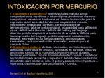 intoxicaci n por mercurio