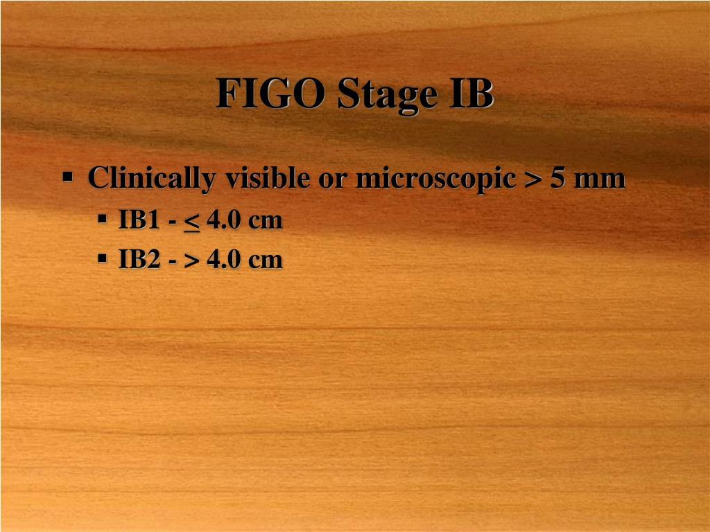 FIGO Stage IB