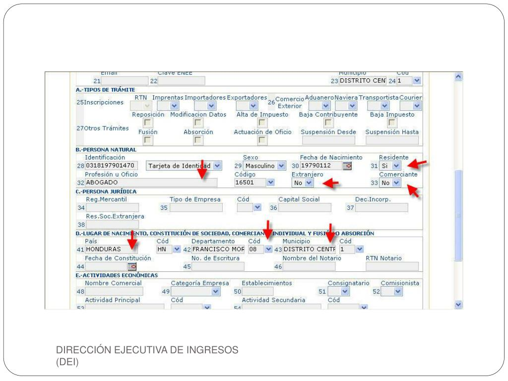 DIRECCIÓN EJECUTIVA DE INGRESOS  (DEI)