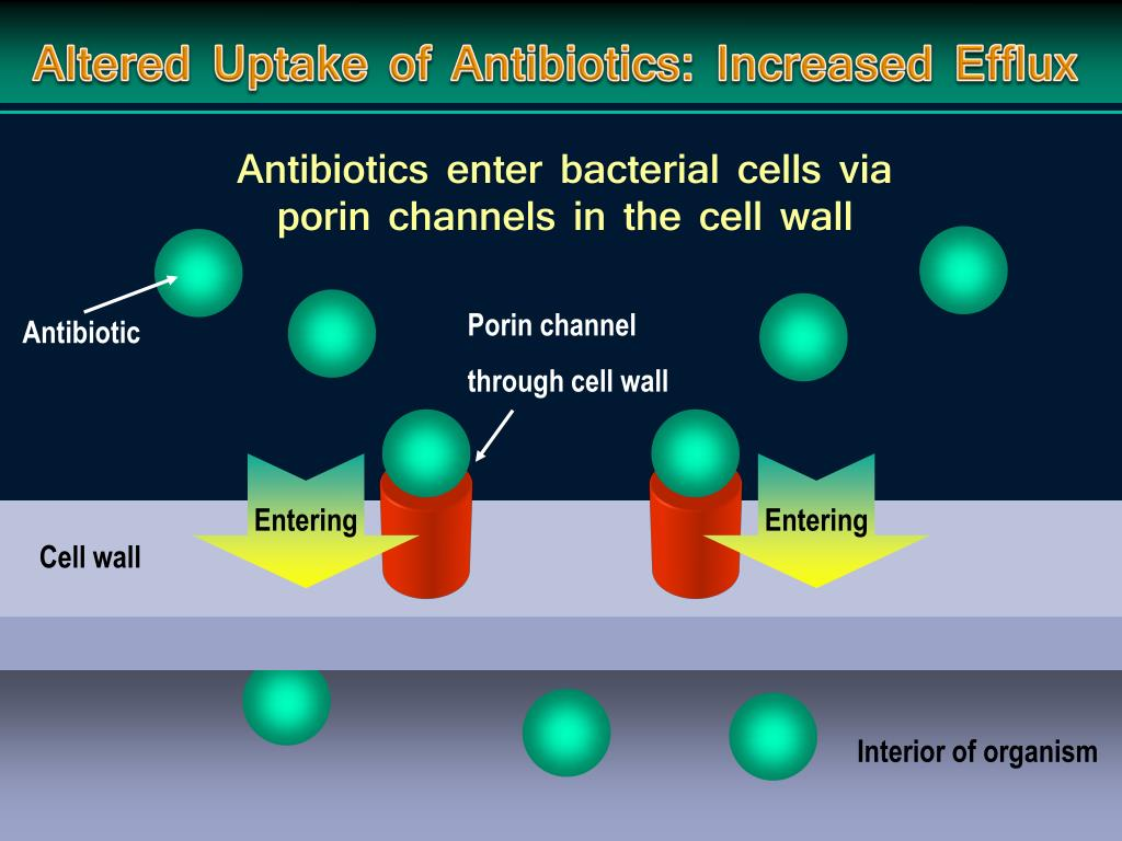 Altered Uptake of Antibiotics: Increased Efflux