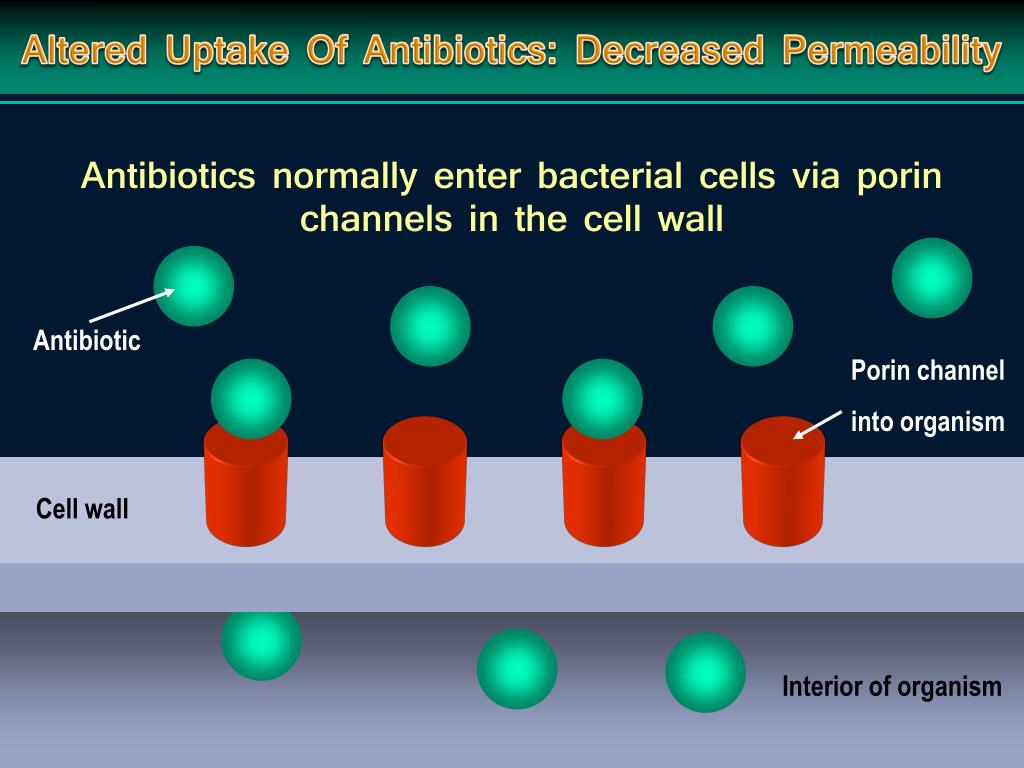 Altered Uptake Of Antibiotics: Decreased Permeability