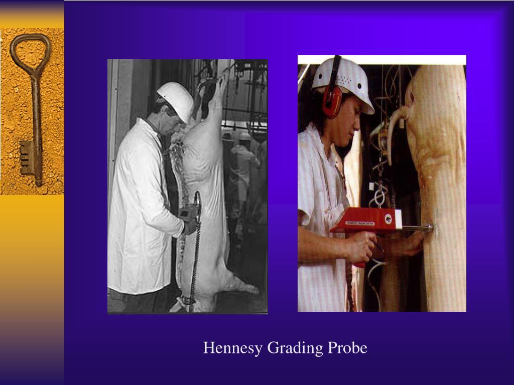 Hennesy Grading Probe