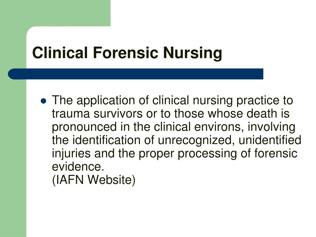 clinical nursing essay Free nursing practice a review of leadership in nursing related to clinical nursing practice use of reflective practice in nursing - in this essay.