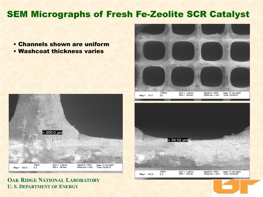 SEM Micrographs of Fresh Fe-Zeolite SCR Catalyst