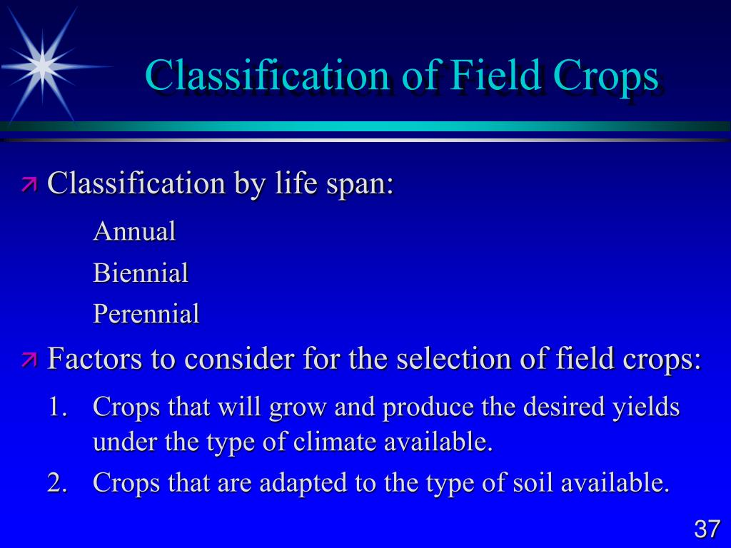 Classification of Field Crops
