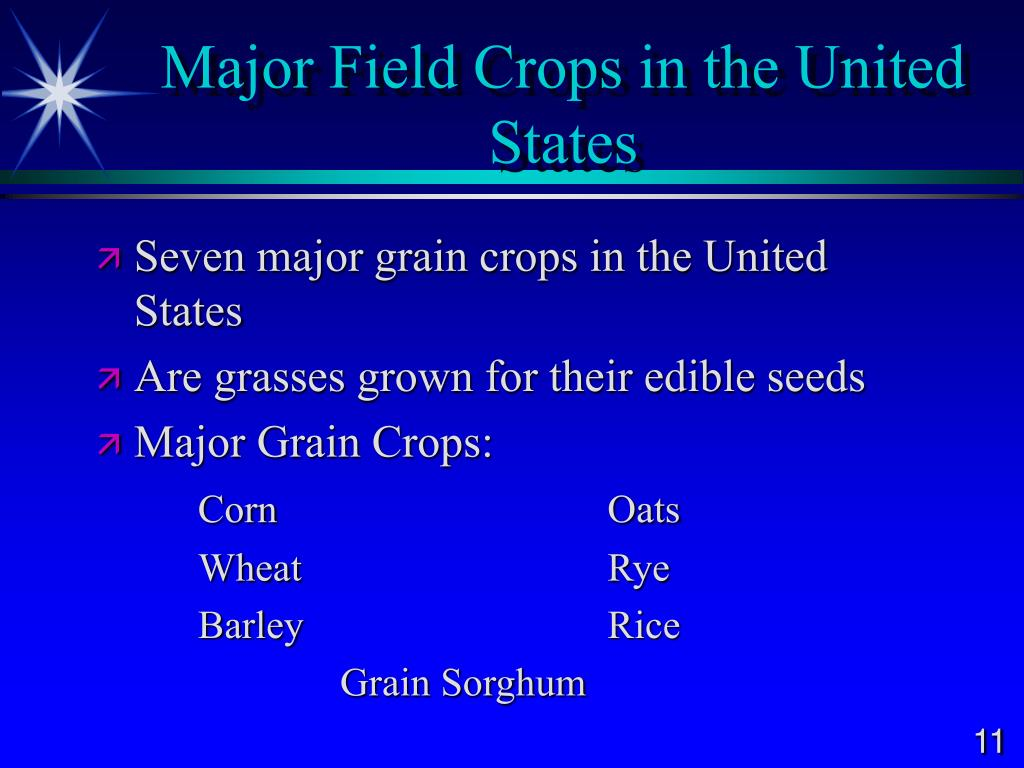 Major Field Crops in the United States