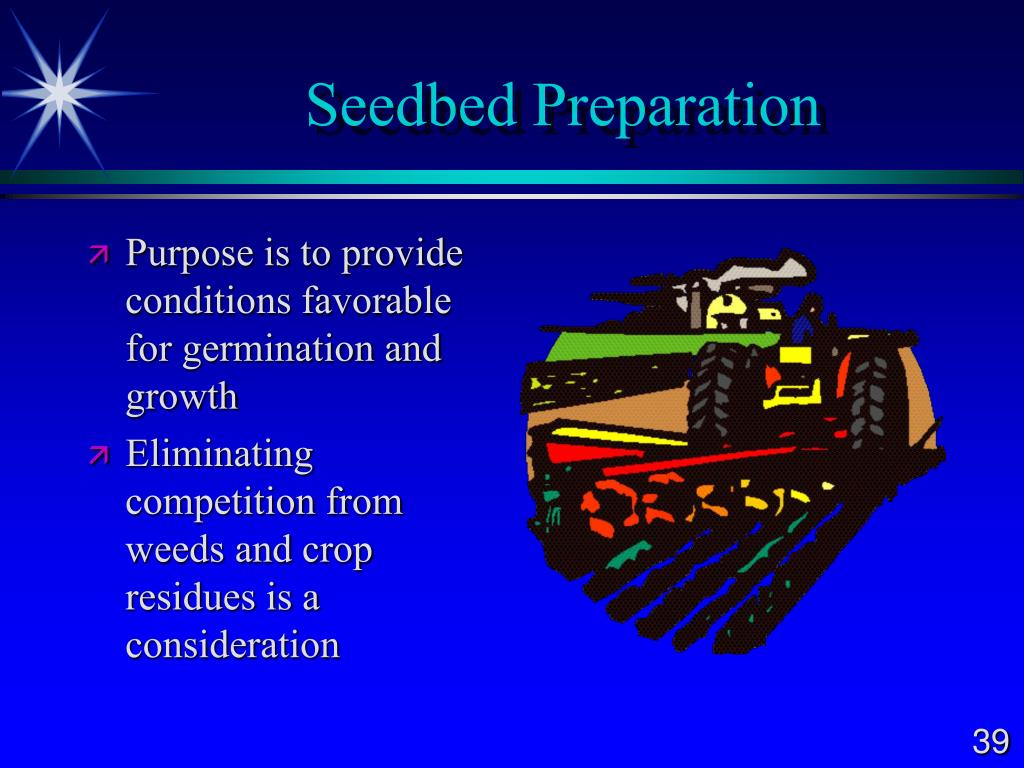 Seedbed Preparation