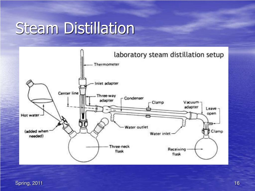 steam distillation essay