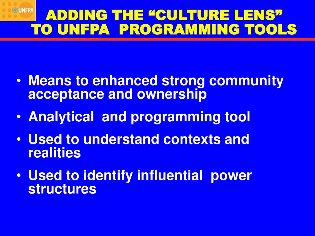 "ADDING THE ""CULTURE LENS"""