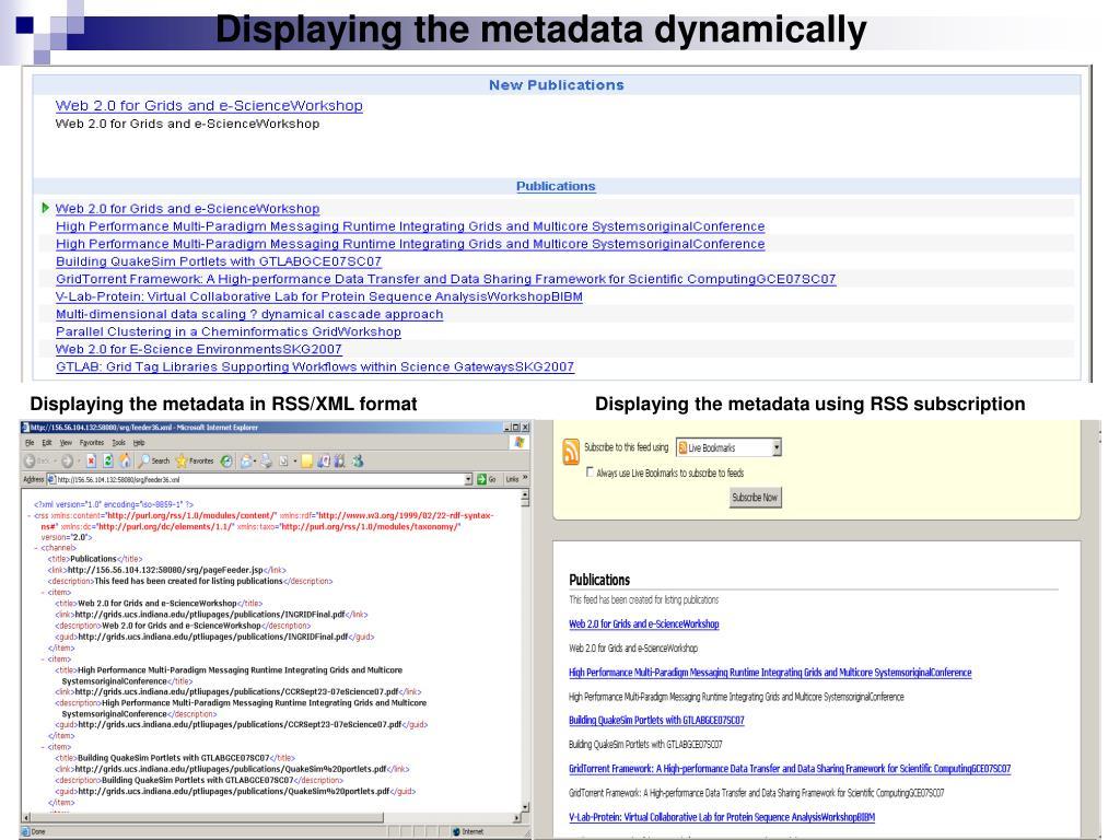 Displaying the metadata dynamically