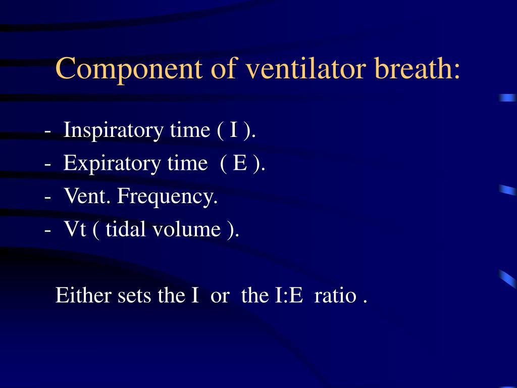Component of ventilator breath: