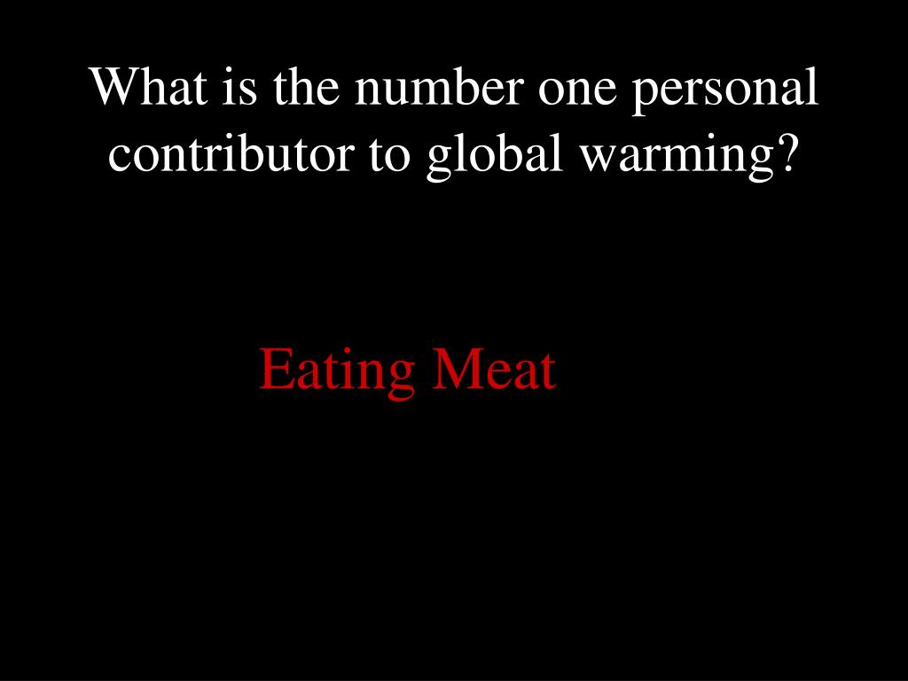 What is the number one personal contributor to global warming?