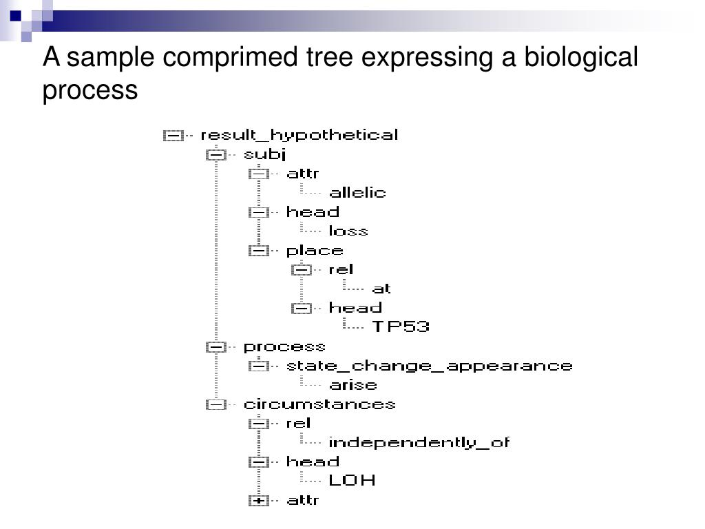 A sample comprimed tree expressing a biological process