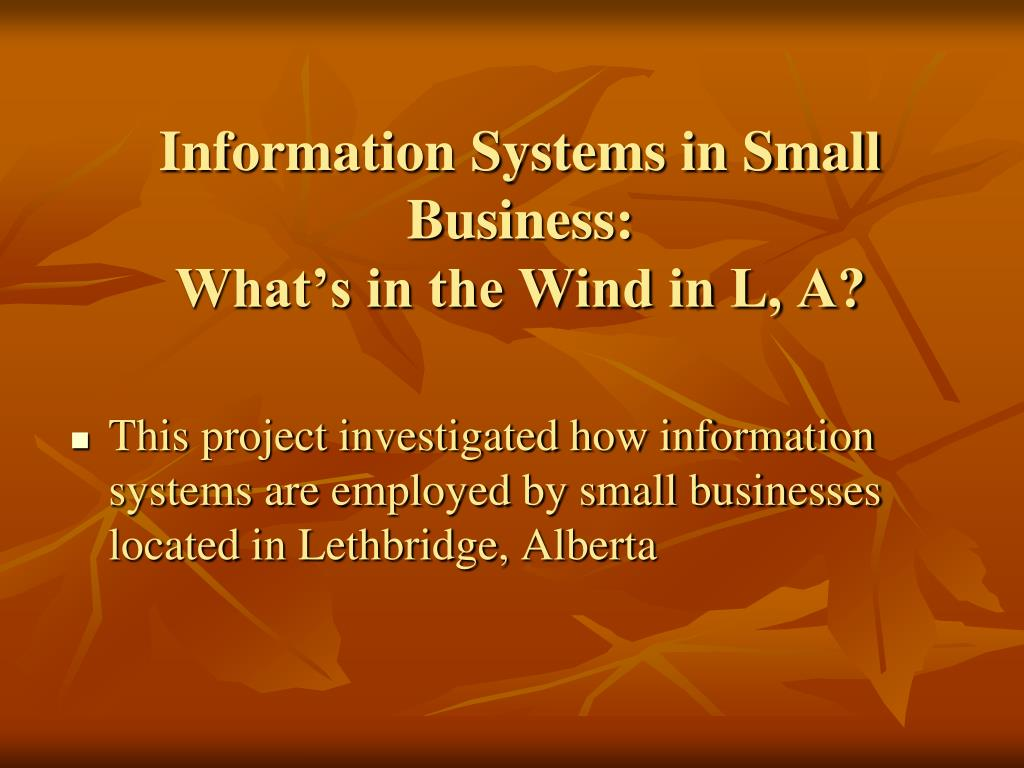 Information Systems in Small Business: