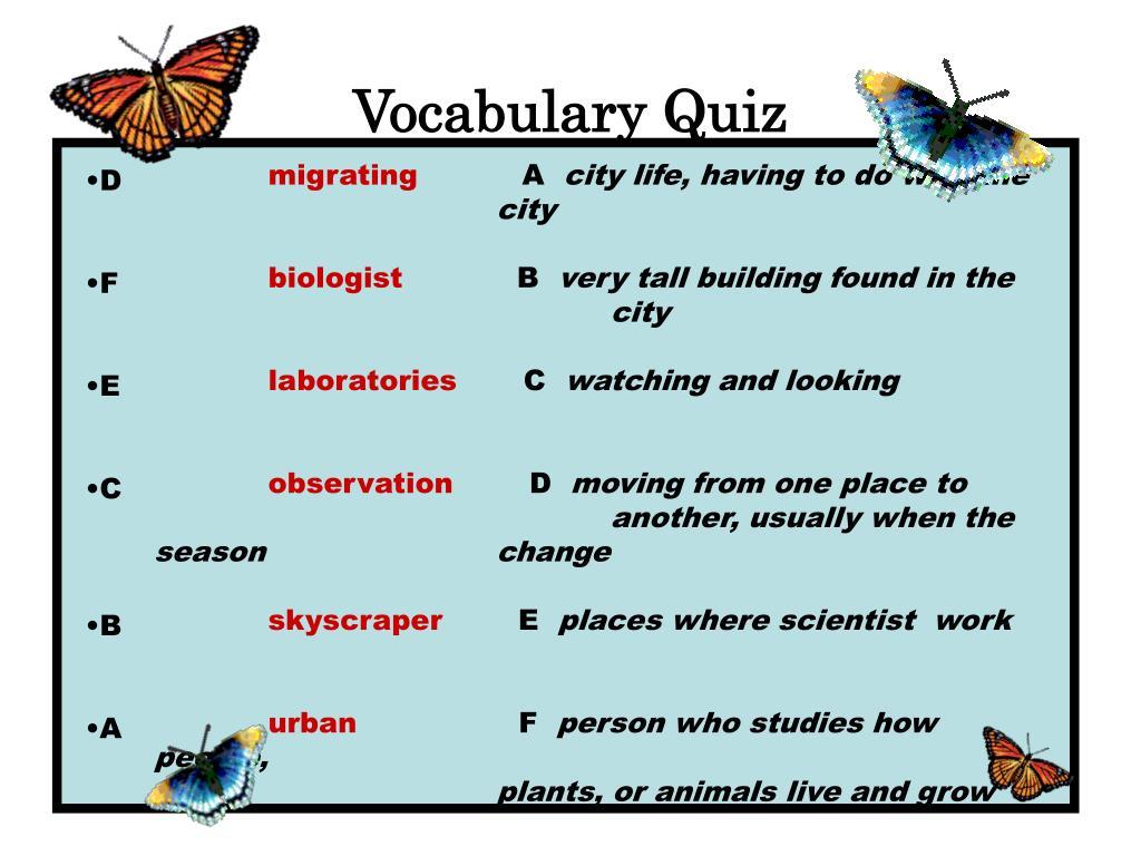 Vocabulary Quiz