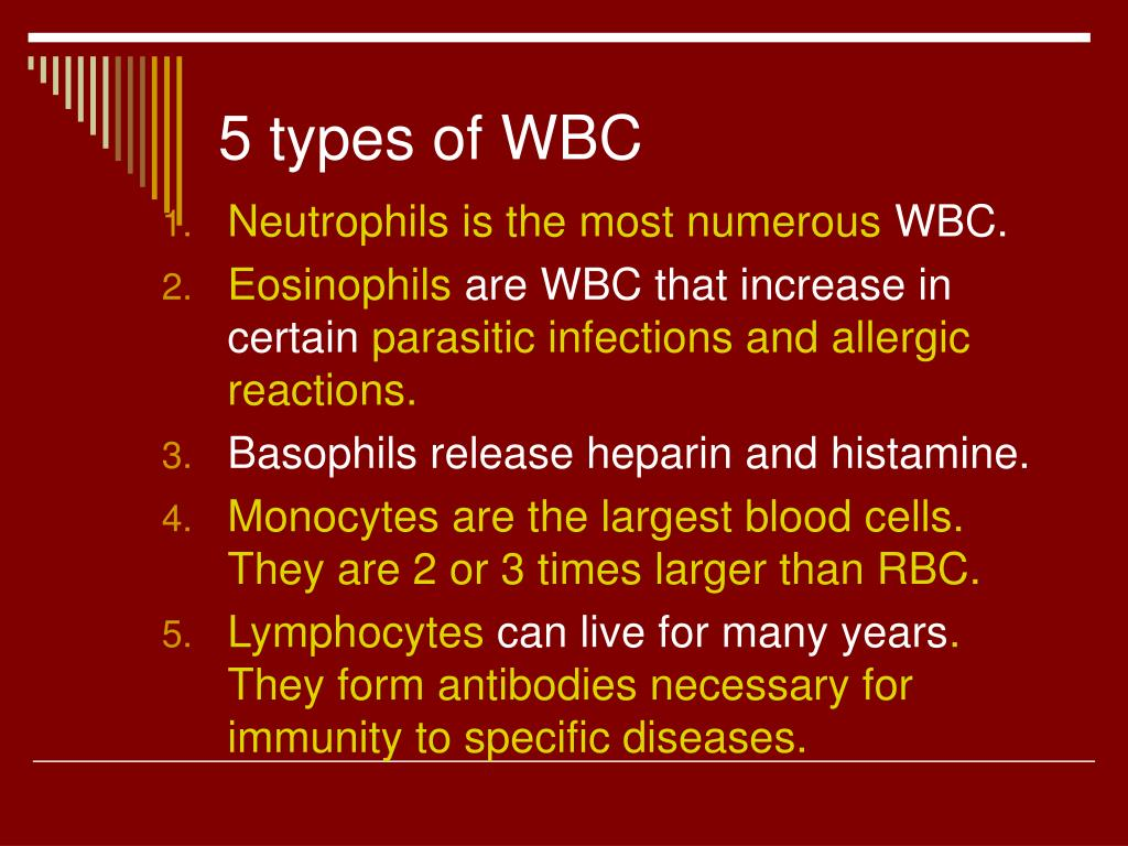 5 types of WBC