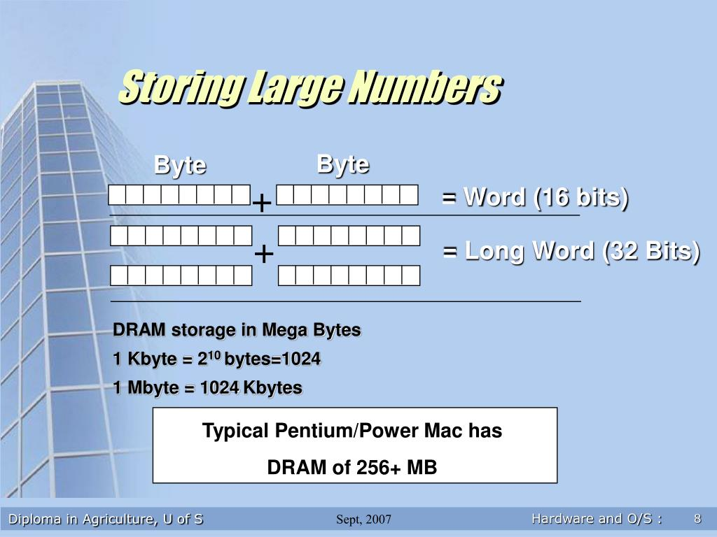 Storing Large Numbers
