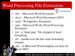 word processing file extensions