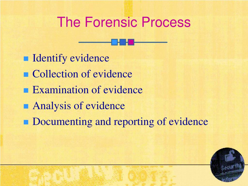 The Forensic Process