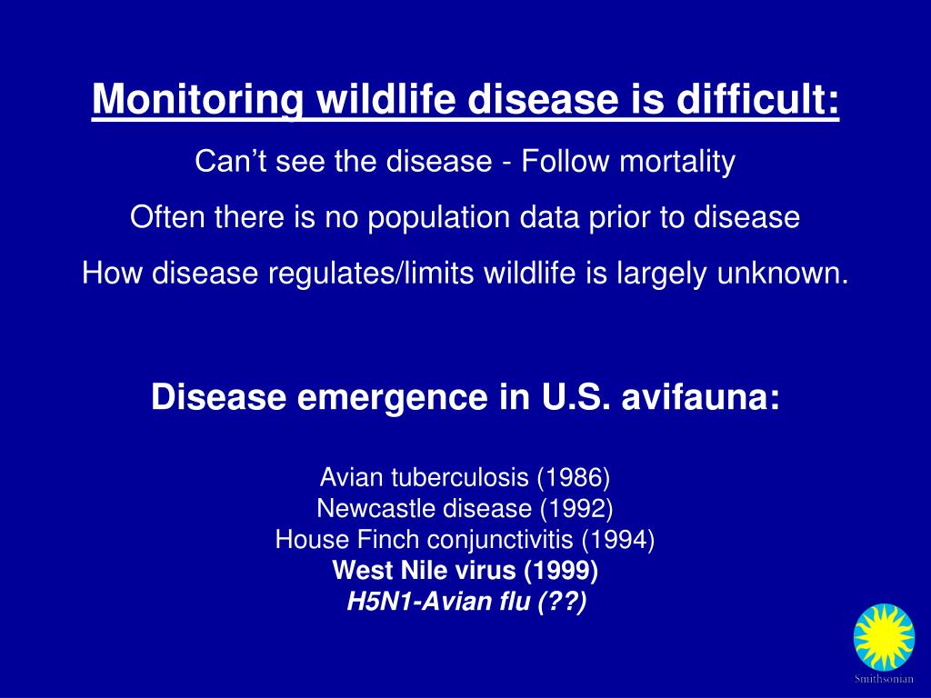 Monitoring wildlife disease is difficult:
