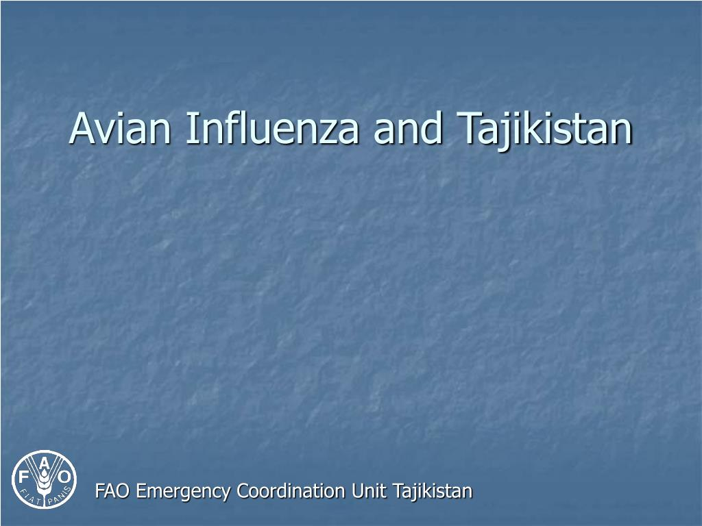Avian Influenza and Tajikistan