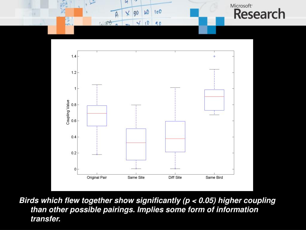 Birds which flew together show significantly (p < 0.05) higher coupling than other possible pairings. Implies some form of information transfer.
