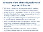 structure of the domestic poultry and captive bird sector