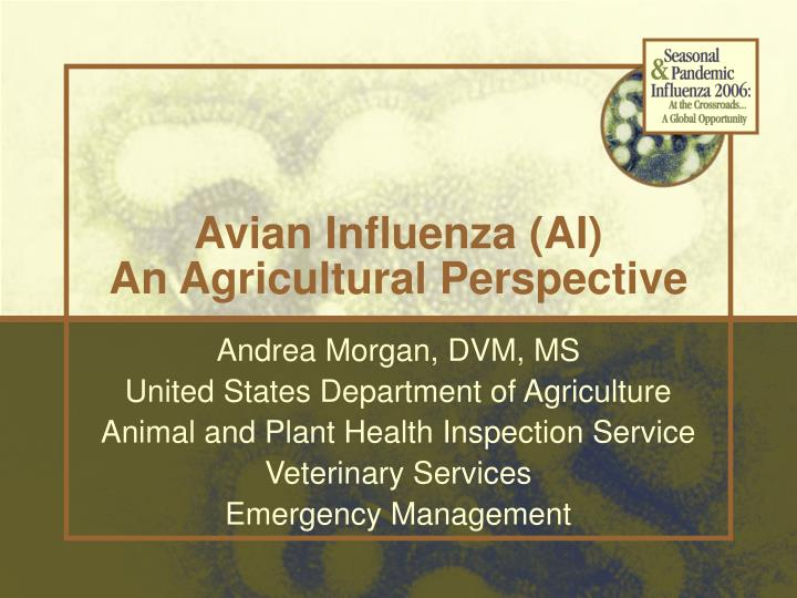 Avian influenza ai an agricultural perspective