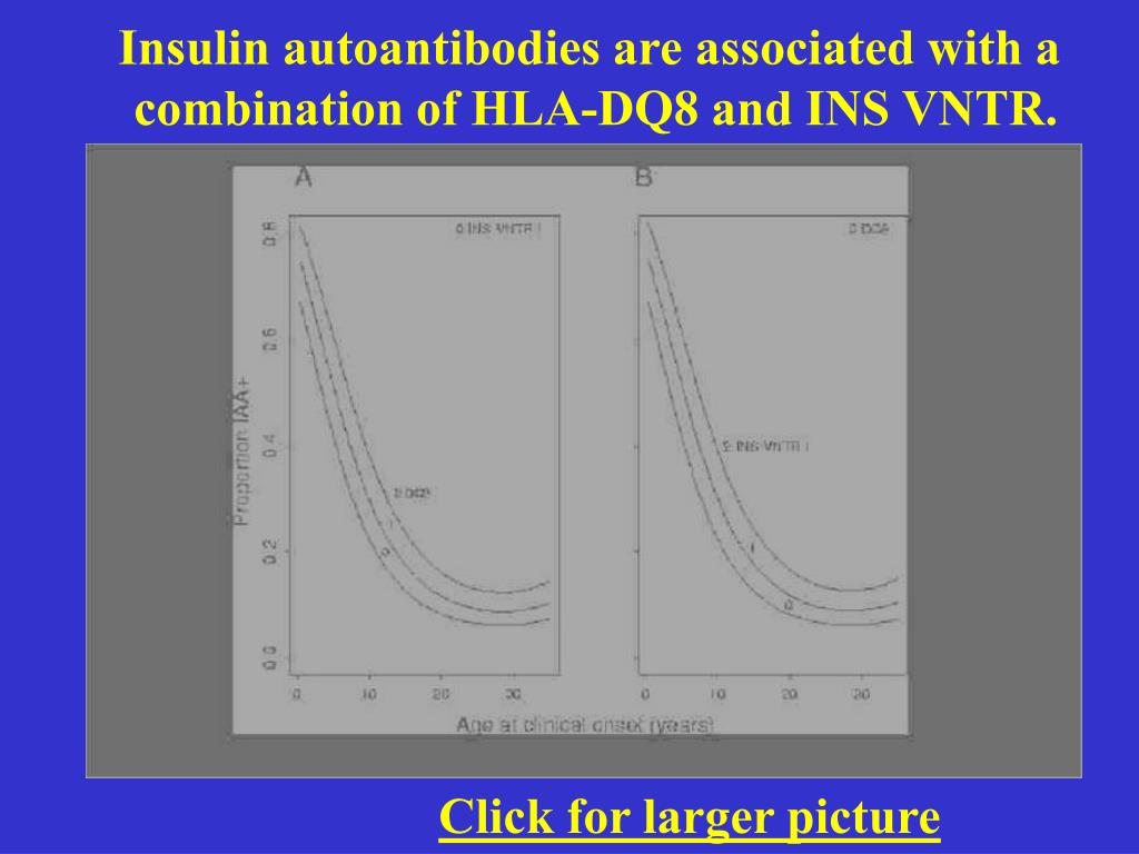 Insulin autoantibodies are associated with a